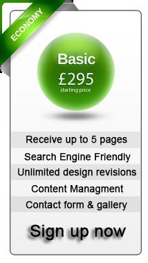 Economy Website Design